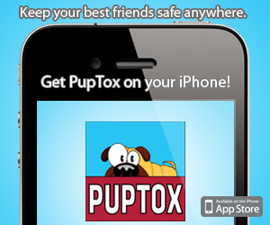 Download PupTox on your iPhone